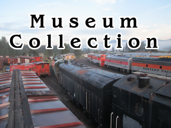 Museum Collection